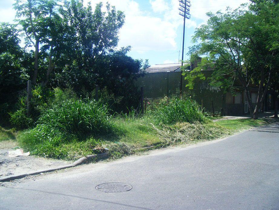 """El PRO en el Concejo dio cuenta del """"estado de abandono"""" en los barrios."""