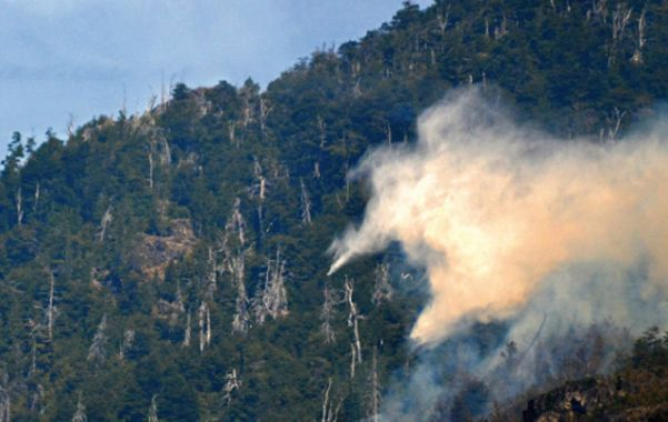 devastador. El fuego avanza sobre pastizales y bosques de la cordillera.