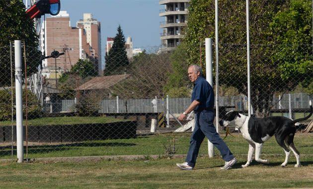 La Municipalidad tiene registrado 3.500 perros de gran porte aunque aseguran el número es mayor. (Foto: S. Salinas)