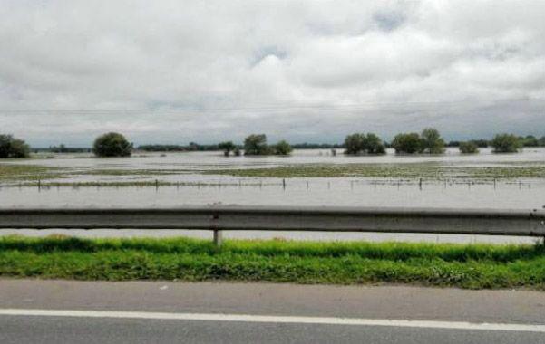 Estancada. En zonas bajas de la región el agua no termina de drenar y cubre los campos.