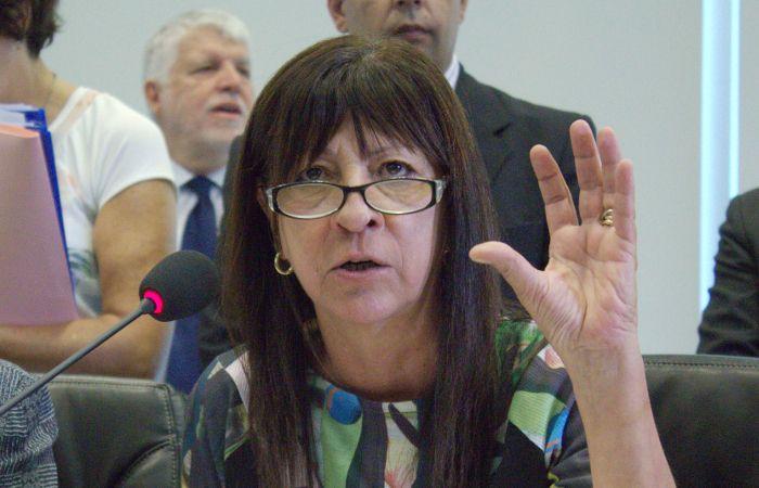 La diputada kirchnerista se refirió a los videos de la polémica.