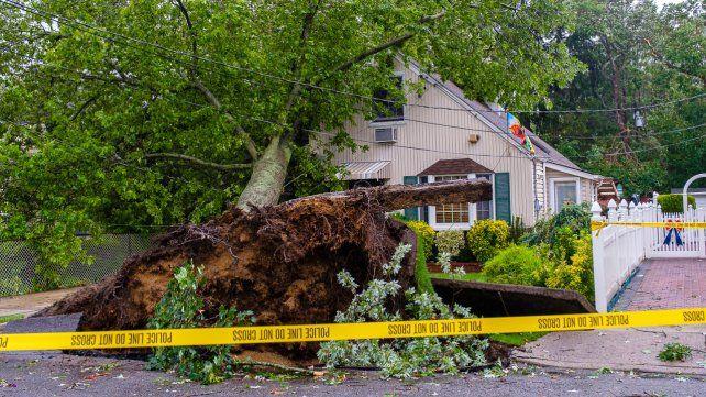 La tormenta Isaías azota al este de Estados Unidos: hay al menos cinco muertos
