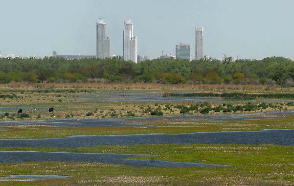 Naturaleza frente a la ciudad. Buscan mantener el valor de una zona clave en el ecosistema de la región.