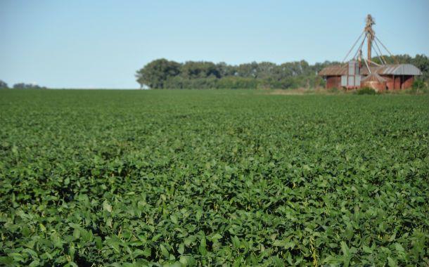 Súper rindes. La cosecha de soja arrojó rendimientos unitarios superiores a la media. La bolsa de Comercio estimó que la producción será de 59 millones de toneladas.