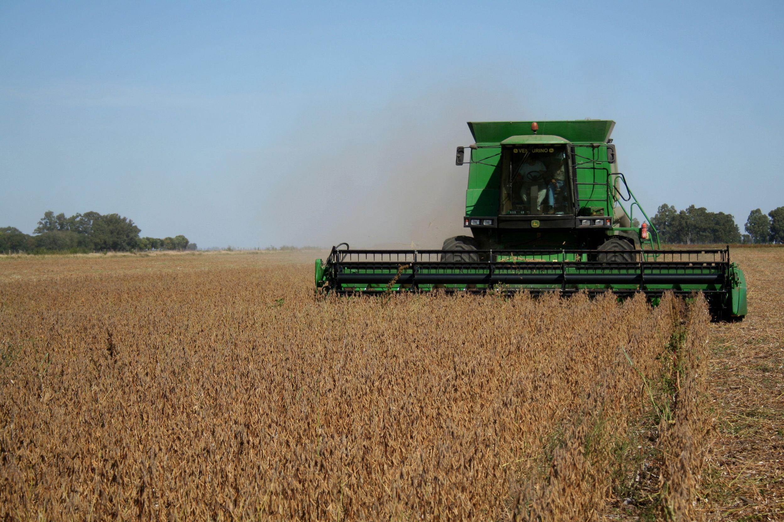 Agro. La agroindustria fue el sector que presentó mayor crecimiento. (Paulina Scheitlin)