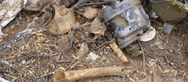 Varios leñadores que trabajaban en un desmonte descubrieron partes de un Piper A28 y restos óseos