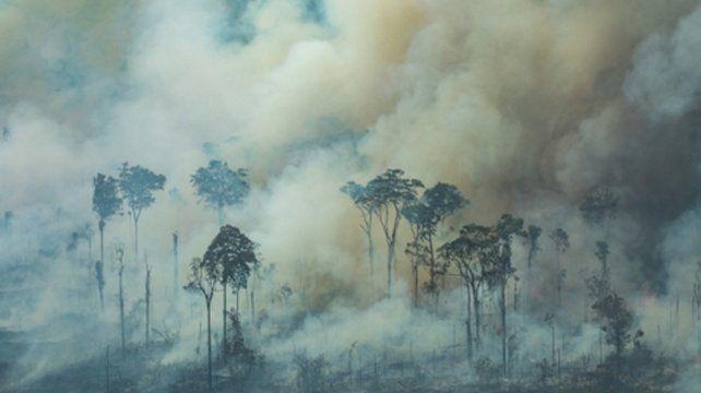Incendio en Amazonia. El desastre ambiental pone en riesgo el ecosistema del pulmón verde del planeta..