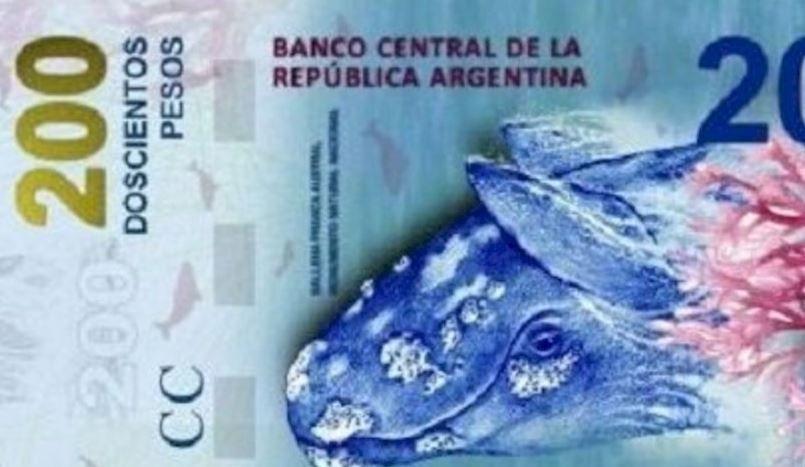 Al que diseñó el billete de $ 200 hay que invitarlo a conocer ballenas y que se dé cuenta que la puso al revés