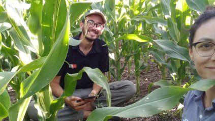 Monitoreo agrícola y herramientas digitales: programa gratuito para estudiantes