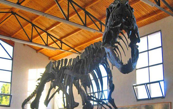 La estrella. La réplica del giganotosaurus carolini es uno de los mayores atractivos de la exposición.