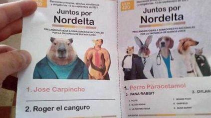 La curiosa lista de roedores que concitó la atención en varias mesas del conurbano bonaerense.