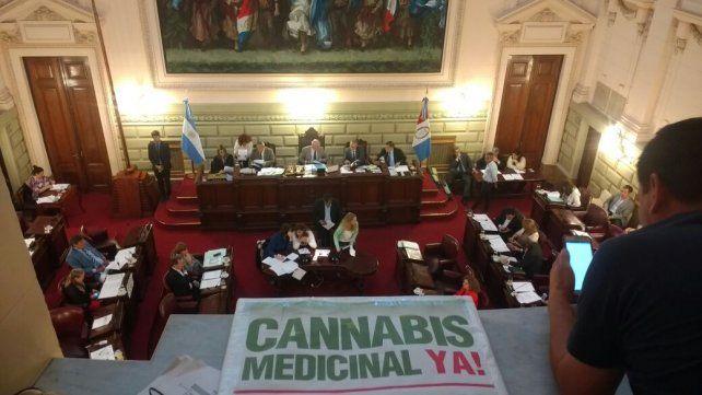 Un logro. El cartel sintetiza la lucha de familiares que exigían el uso medicinal del cannabis. La legislatura santafesina lo convirtió en ley en diciembre.