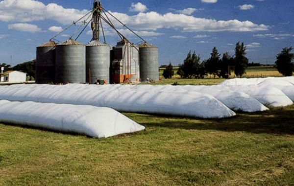 Habrá un seguimiento on line del proceso efectuado por los productores y operadores comerciales agrarios.