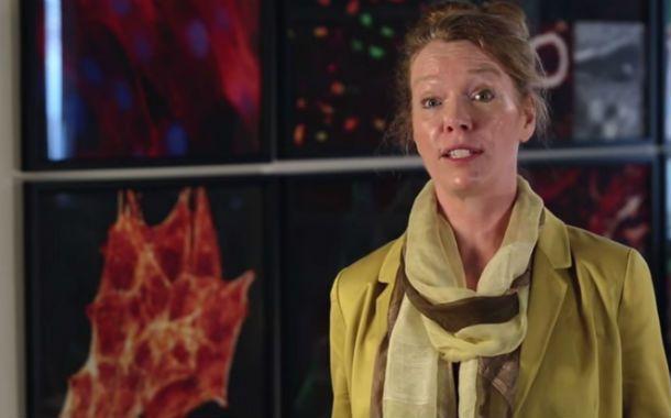 La doctora Melissa Knothe Tate lidera el proyecto de la Universidad Nueva Gales del Sud.