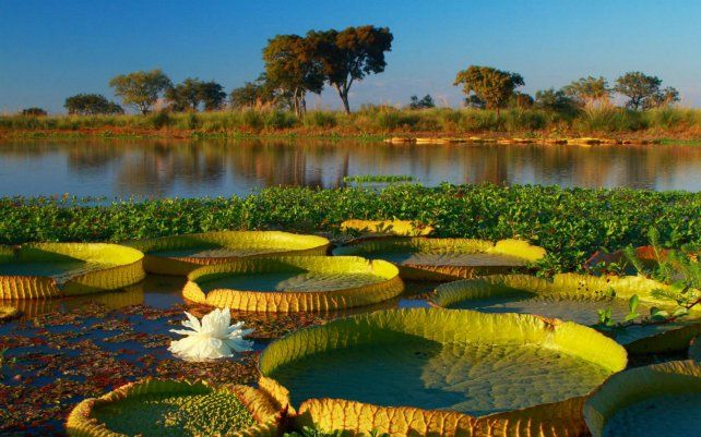 La zona tiene un amplio potencial para el ecoturismo pero no se desarrolló la infraestructura necesaria.