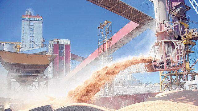 El sector agroindustrial registró mayor cantidad de operaciones y aprovechó el diferencial arancelario que dispuso el gobierno al modificar las retenciones.