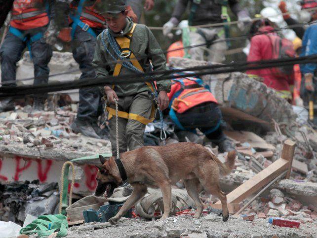 Se eleva a 318 la cifra de muertos por terremoto en México