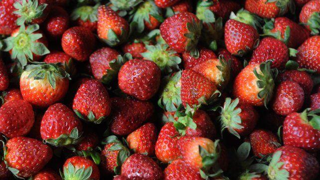 Siempre tener a mano alternativas frescas como ensaladas y frutas, para que si nos juntamos durante todo el día y estamos picoteando tengamos una opción saludable.
