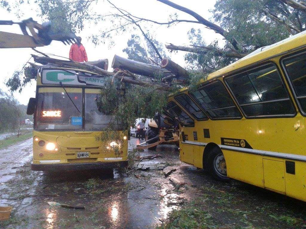 La tormenta provocó la caída de árboles y ramas y el corte de cables del tendido eléctrico.