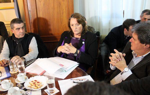Ana Viglione defendió su gestión ante los integrantes de la comisión de Seguridad de Diputados.