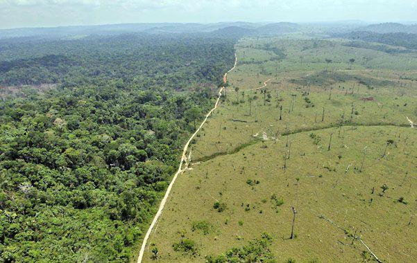 Problema. Area deforestada en el norte de Brasil.