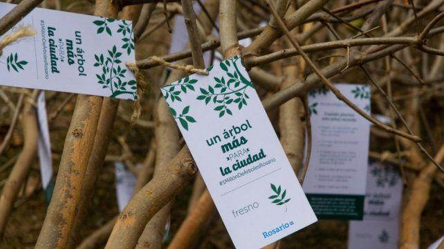 En los centros municipales de distrito y en Parques y Paseos se repartirán ejemplares de árboles.
