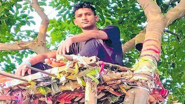 Un joven con Covid-19 vivió 11 días en un árbol para no contagiar a su familia