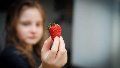 Las frutas, uno de los elementos clave en la dieta.