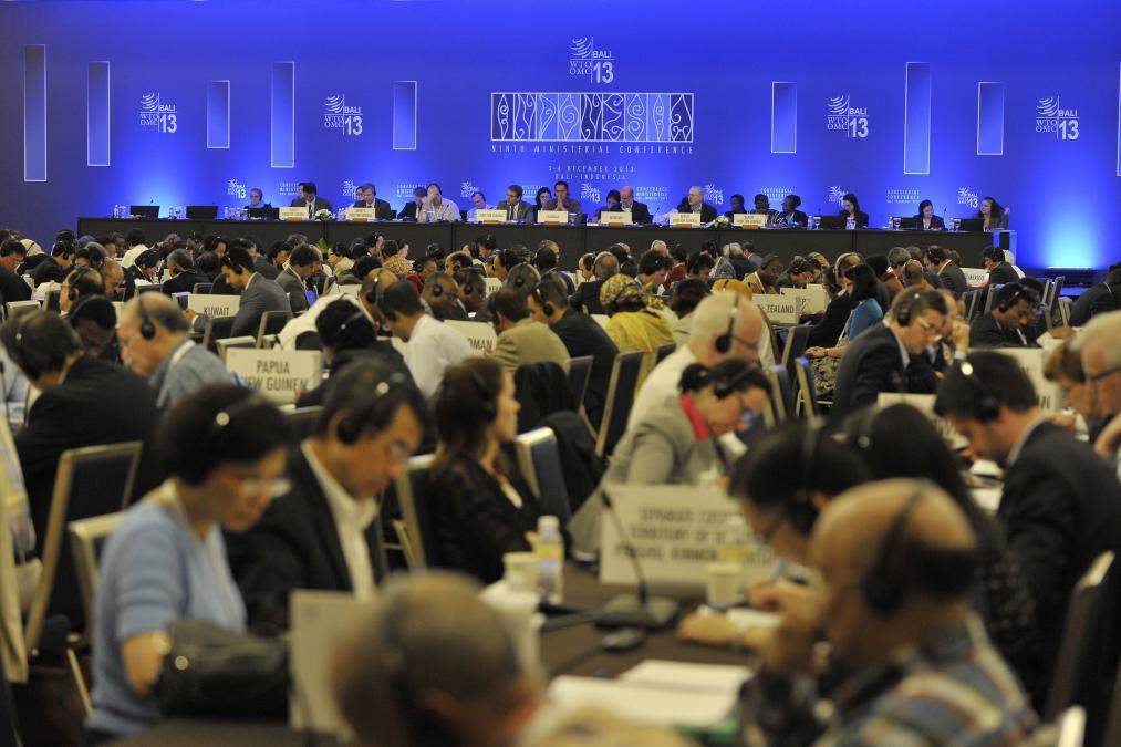 Los países integrantes de la OMC
