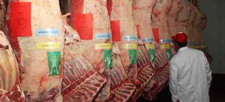 Nuevo recorte en exportaciones de carnes, señal negativa para referentes del sector