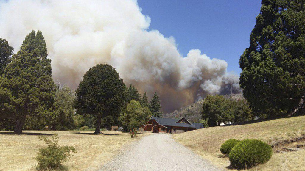 El mayor de los incendios alcanzó una superficie de 1.700 hectáreas de bosques nativos. (NA)