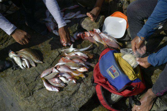Pandemia en Venezuela: obligados a salir a pescar para comer