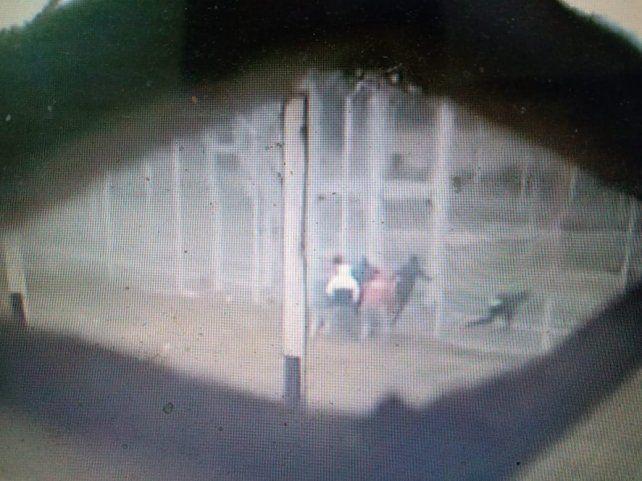 El momento del escape filmado por uno de los internos desde adentro del penal.