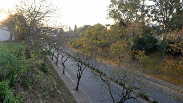 La avenida Pellegrini vista desde el puente peatonal que la cruza por arriba