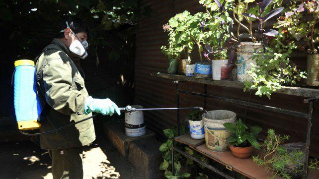 Dengue, la epidemia eclipsada