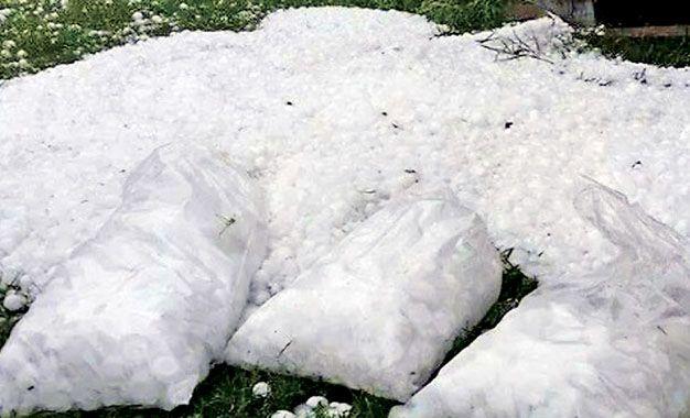 Acopio. Las bolsas de polietileno llenas hielo recolectadas en Coronel Domínguez recorrieron ayer las redes sociales.