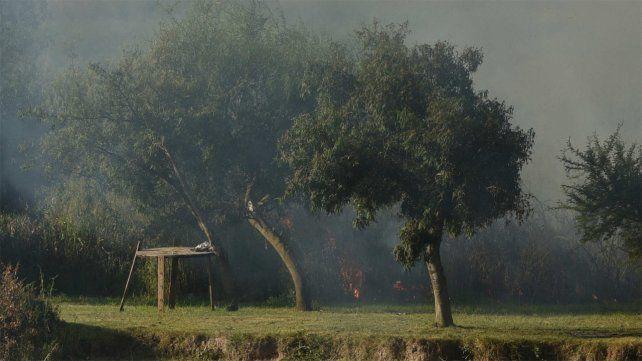 Bomberos de Victoria advierten que los incendios son por asados que hacen los rosarinos