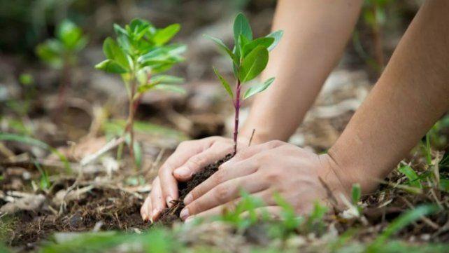 El especialista es educación ambiental destaca de la nueva ley el principio de equidad e igualdad entre los seres vivos.