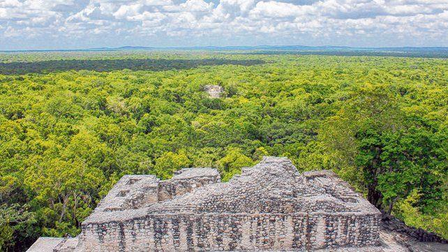 Ecoturismo. La Reserva de Biosfera de Calakmul, en el estado de Campeche, es uno de los escenarios ofrecidos para esta nueva experiencia de las comunidades indígenas.