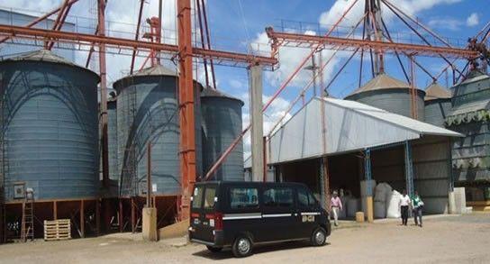 Las Pircas declaró ante el fisco poseer 285.692 toneladas de granos en su planta de Acebal.