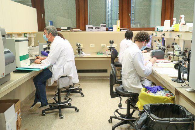 Científicos de Holanda y Bélgica detectaron casos