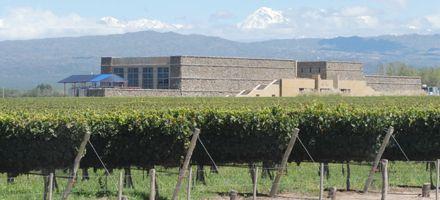 Mendoza: su majestad el vino