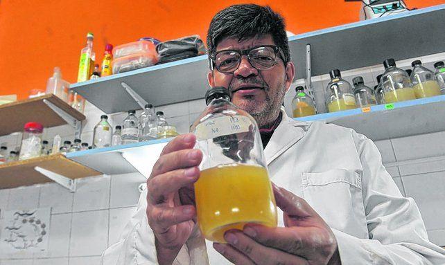 en sus manos. Roberto Grau es el director que lideró el equipo de investigación.