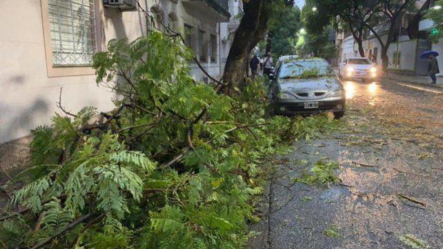 Temporal en Rosario: árboles caídos, calles anegadas y voladuras de techo