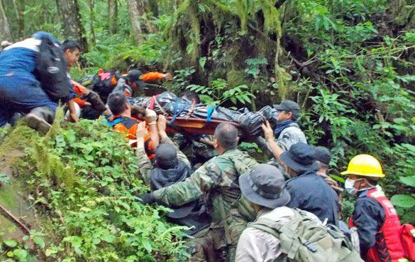 En la selva. Los rescatistas trasportan el cuerpo por entre la vegetación del parque nacional Calilegua.