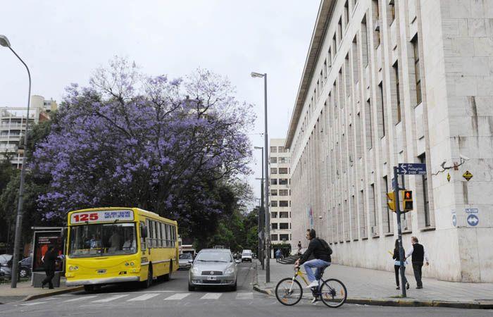 El caso se analizó en los tribunales provinciales de Rosario.