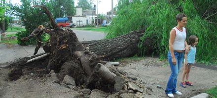 El verano llegó con una tormenta de viento con ráfagas de hasta 70 kilómetros
