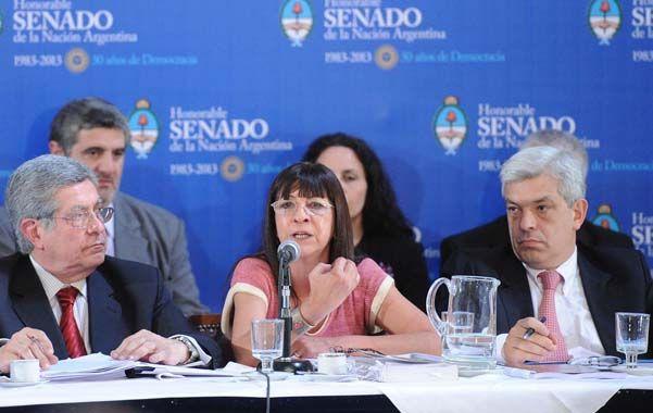 Informe. La senadora Ruiz Díaz (FpV) dio explicaciones sobre el proyecto.