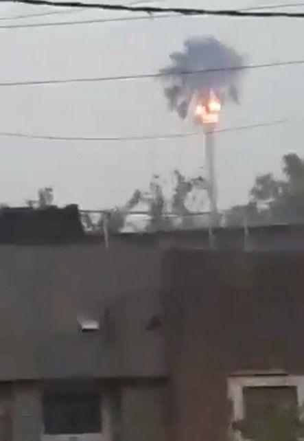 Video: un rayo impactó sobre una palmera en plena tormenta y terminó en llamas