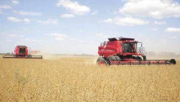 Los fondos agrícolas prevén una rentabilidad de hasta 30%